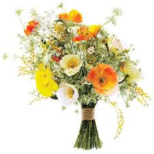 Pictures Flower Bouquets - best 25 poppy wedding bouquets ideas on pinterest bouquet for
