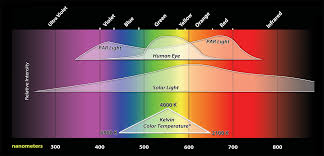 what color light do plants grow best in plant lighting fundamentals inda gro induction lighting systems