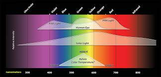 best light for plants plant lighting fundamentals inda gro induction lighting systems