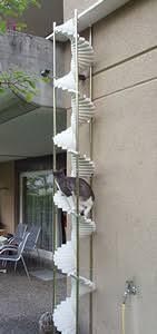 katzenleiter balkon noch mehr über katzenleitern 5 lösungen für ihr zuhause katzen