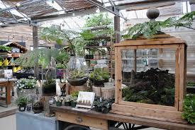 garden centers in ct madison flower shop u0026 garden center 11
