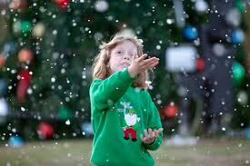 hoover al official website christmas tree lighting