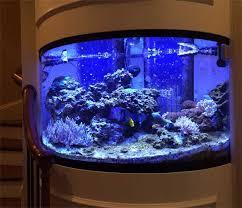 custom aquarium designs