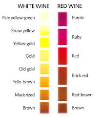 chart color coloring food online coloring