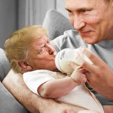 Man Baby Meme - putin s little man baby steemit