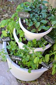 herb gardens diy stacked herb garden
