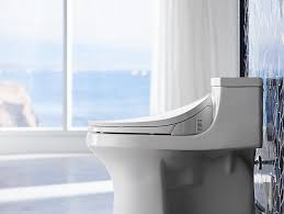 What Is A Toilet Bidet K 4108 C3 230 Toilet Seat With Bidet Functionality Kohler
