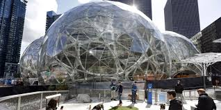 amazon spheres amazon is building tree filled corporate domes at