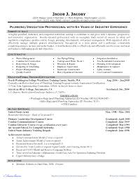 Team Leader Resume Example by Infantry Skills For Resume Free Resume Example And Writing Download