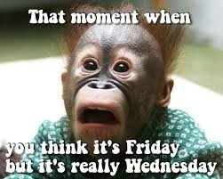 Happy Wednesday Meme - its only wednesday pictures photos and images for facebook tumblr