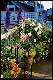 cottage garden flowers how to grow a cottage garden sunset