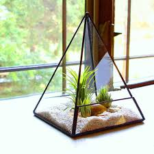 miniature greenhouse reviews online shopping miniature