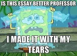 Essay Memes - essay meme professor tears memes comics pinterest