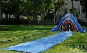 Backyard Slip N Slide Slip N U0027 Slide Gifs Search Find Make U0026 Share Gfycat Gifs