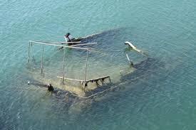 Lake Michigan Shipwrecks Map by The World U0027s Best Shipwrecks Demo 13