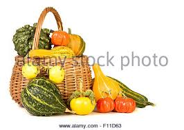 basket filled with assorted gourds for thanksgiving stock photo