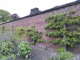 Walled Garden For Sale by England The Horticultural Therapist