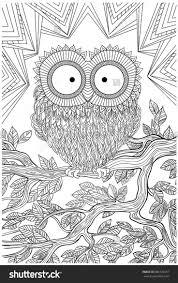 1089 best birds to colour images on pinterest owls