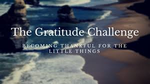 Challenge Meaning The Gratitude Journal Challenge To Optimal Living