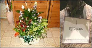 Dog Flower Arrangement Mom U0027s Husband Sends Flowers Then She Looks At Tag And Sees They