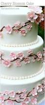 cherry blossom cake cake decorating video tutorial cake