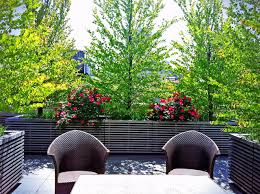 Rooftop Patio Design Rooftop Patio Garden Crowdbuild For
