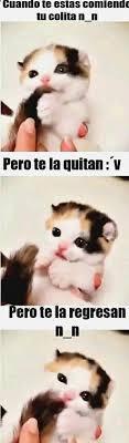 Buenos Memes En Espaã Ol - o encuentra lo mejor en memes en español friki chistes buenos mp