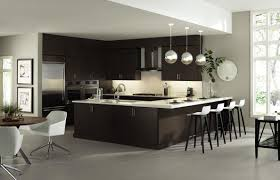 Espresso Kitchen Cabinets by Roll Out Shelves For Kitchen Cabinets Kitchen Cabinet Organization