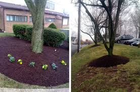 if you like your trees and want to keep them easy on the mulch