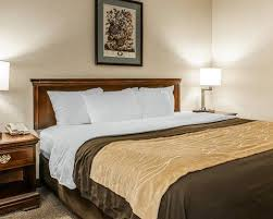 Comfort Inn Promotions Comfort Inn Hotels In Franklin In By Choice Hotels