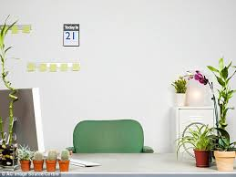 Desk Plant Putting A Plant On Your Desk Can Make You Happier And More