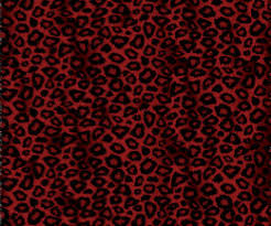 cheetah print wrapping paper cats wrapping paper zazzle
