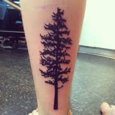 forearm 81 pine tree tattoos and ideas style portraits
