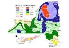 Gardening Zones Uk - new york state weather map map usa map images