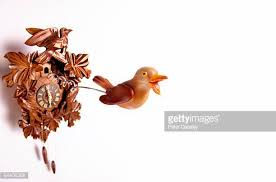 cuckoo clock stock photos and pictures getty images