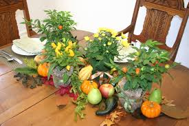 thanksgiving green tips stress free tips for hosting and attending thanksgiving