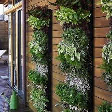 lovely hanging herb garden kitchen and 18 brilliant and creative