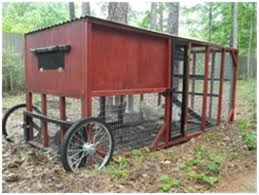 chicken coops for sale in florida 20 with chicken coops for sale