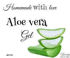 aloe vera plant facts making aloe vera gel at home video tutorial
