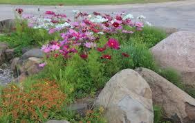 Rock Garden Restaurant Rock Garden Landscape In Front Of Restaurant Picture Of New