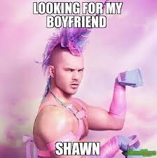 Shawn Meme - looking for my boyfriend shawn meme unicorn man 79760