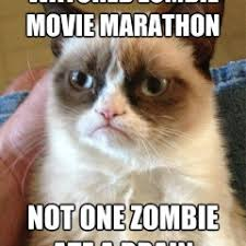 Funny Zombie Memes - funny cat memes archives page 818 of 983 cat planet cat planet