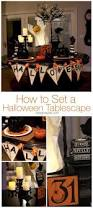 Halloween Kitchen Decor 3457 Best Fabulous Halloween Ideas Images On Pinterest Halloween