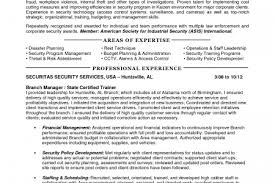 It Manager Resume Examples by And Safety Manager Resume Template Premium Resume Samples Example