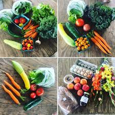 buy local grow local independent we stand independent we stand millsap farms csa blog csa information recipes food for thought