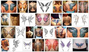 collection of 25 butterfly wings designs