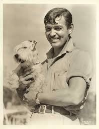 clark gable clark gable and a puppy matthew u0027s island of misfit toys