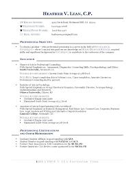 sle resume for job change career change cv sles