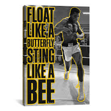 float like a butterfly sting like a bee 18 w x 26 h x 0 75 d