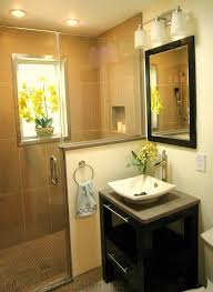 Small Bathroom Walk In Shower Walk In Showers For Small Bathrooms Bathroom Modern With None